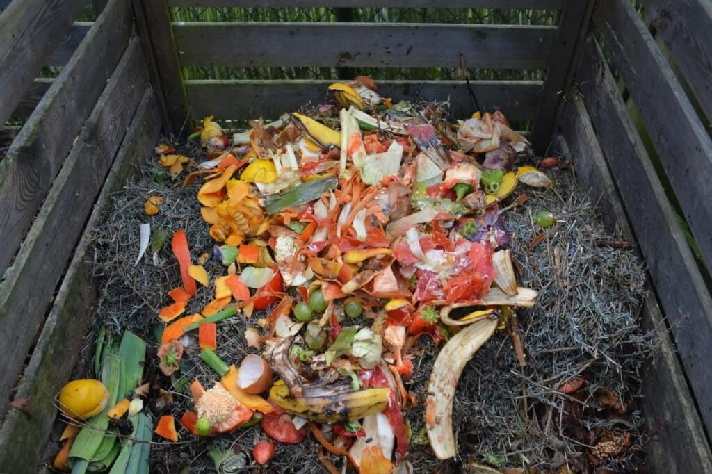 Bioabfälle & Grünschnitt richtig entsorgen