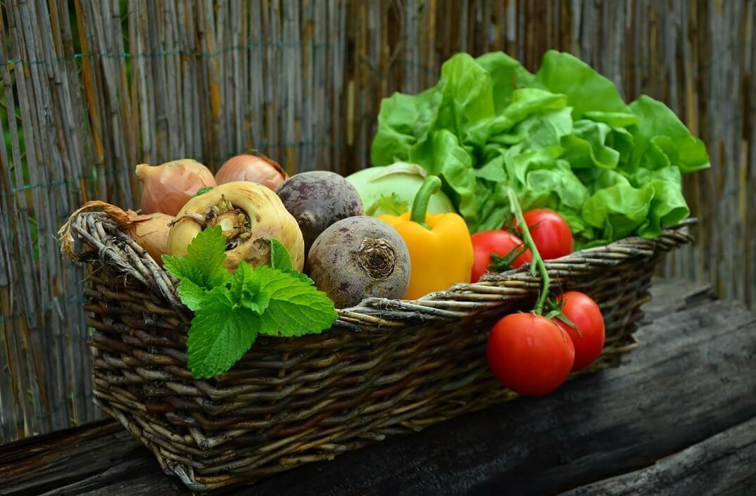 Gemüsebeet & Gemüsegarten anlegen - Anleitung für Anfänger